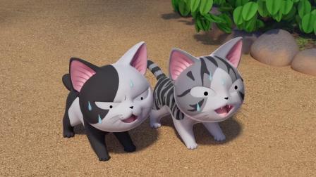 甜甜私房猫:哇,好好玩哦!