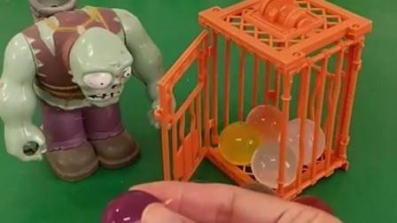 亲子有趣幼教玩具:僵尸做的糖葫芦有哪些颜色呢