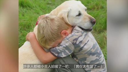 """""""害怕打雷""""狗狗吓到躲起来宝宝安慰:别怕有我在~"""
