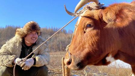 暴雪后的长白山,秘制冰雪牛窝骨,配上朝鲜牛肉汤饭,满足的生活