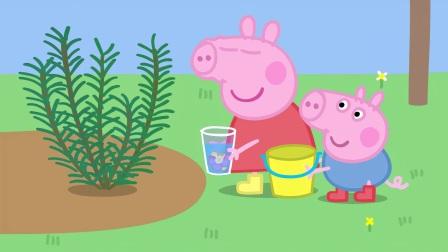 小猪佩奇:佩奇闻了奶奶的香水,非常喜欢,决定自己做一瓶香水