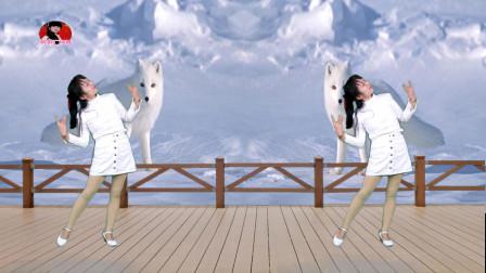精品广场舞32步子舞《白狐》