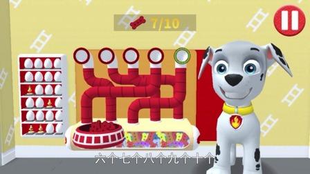 狗狗汪汪队:毛毛现在饿了,他要吃饭啦。