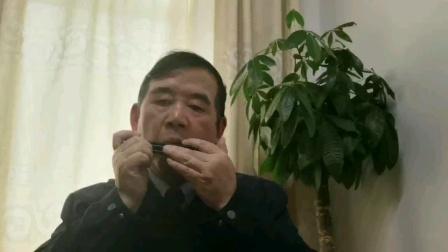 李红葵口琴演奏:乌苏里船歌