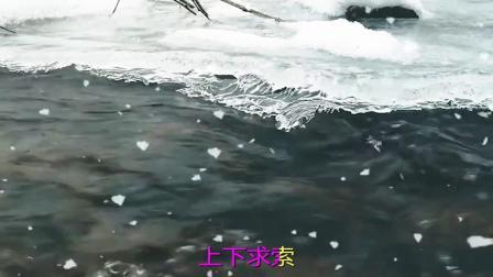经典老歌:渴望-毛阿敏