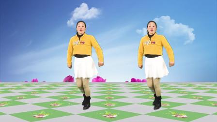 热歌DJ广场舞《回头看看我》欢快动感,非常好听!