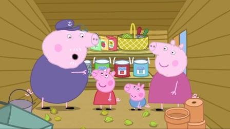 小猪佩奇:猪爷花园种花种,转身花种就消失,谁是罪魁祸首呢