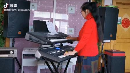 《我的根在草原》视频双电子琴演奏
