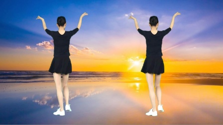 广场舞《再见已是故人》背面演示教学