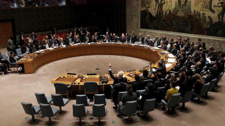 联合国最团结的一次!185个国家一致支持此国,到底是那个国家