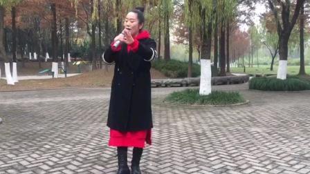 王伟萍演唱《浪迹天涯》