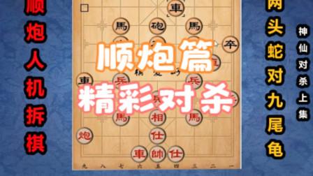 顺炮布局精讲:两头蛇飞边相vs双横车九尾龟(神仙对杀上集)