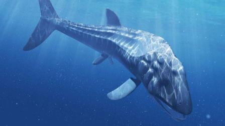 史上最大的鱼,利兹鱼体长可达27米,生活在侏罗纪