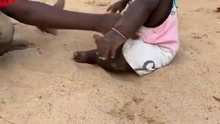 非洲哥哥带妹妹玩,上去就一阵蹂躏,也不怕伤到她