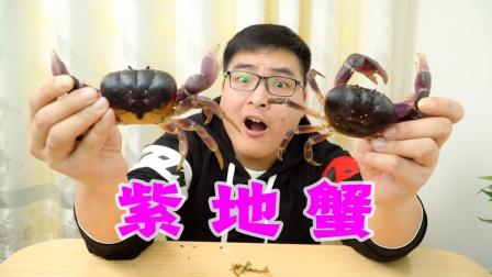 """吃人参和灵芝长大的""""紫地蟹""""!两只就要436块钱,吃了能成仙"""