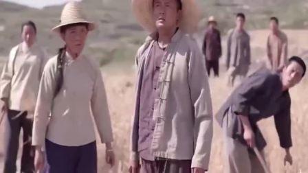 老农民:暴雨前全村人都在收麦子,男子却按兵不动,结果大丰收