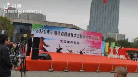 2020年平阳县武林大会武术展演