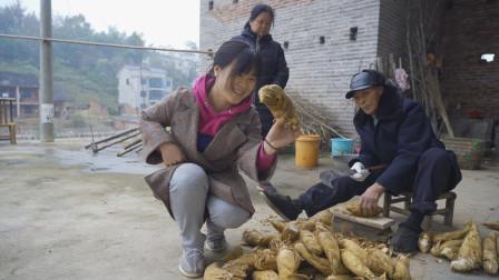 湖南妹子回村里收冬笋,发现村里的老人真厉害,一年买笋赚几千块