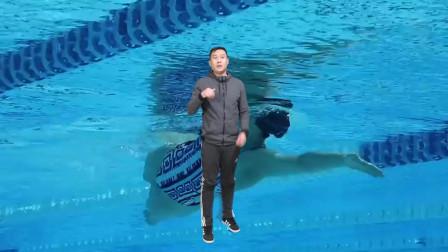 中游体育:冷知识 为什么蛙泳要起高而蝶泳要低平