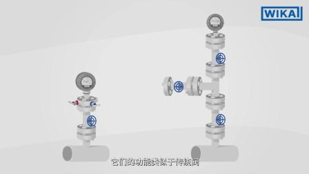 威卡中国:什么是法兰阀?| 功能、型号和应用领域(中文中字)