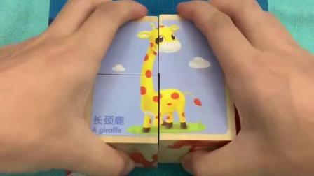 小小拼块,玩出大智慧,锻炼宝宝动手能力,认识动物图案