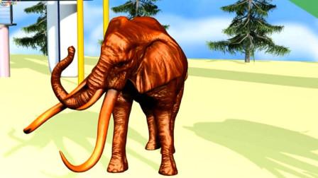 趣味益智 亲子早教认知各种大象的颜色吧