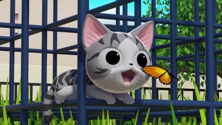 甜甜私房猫:可爱的小蝴蝶!