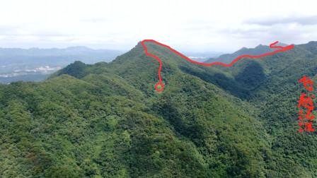广西大山深处不起眼的山脉,是太平天国石达开的祖地,格局少见