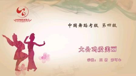 4--6、大公鸡爱美丽(中国舞蹈家协会考级教材第四版 第四级)