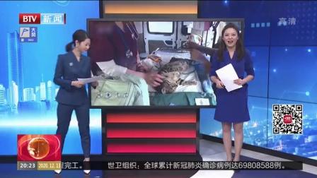 兰州达川三江口天鹅湖上了电视
