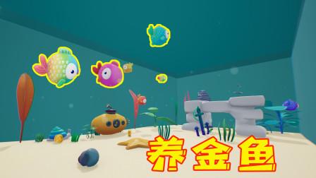 鱼缸模拟器!我打造一个豪华又漂亮的鱼缸,在里面养了六条金鱼