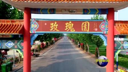 """玫瑰镇:乡村建设""""动""""起来  破局融入新发展"""