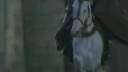 蔡瑁追杀刘备,关键时刻的卢不再低调,飞身过河
