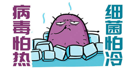 为什么说病毒怕热,而细菌怕冷?