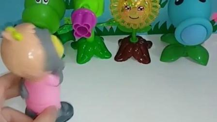 亲子幼教宝宝:大眼僵尸太大意了,被植物大炮戏弄了吧