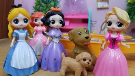白雪公主故事 长发出题,白雪和爱丽丝谁赢就可以优先养狗狗