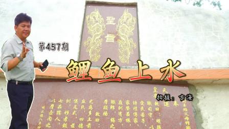 带你去考察广东高州黄氏的明代古墓鲤鱼上水