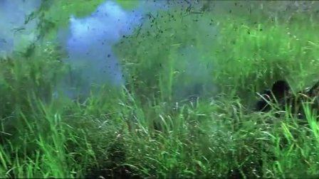 狙击电影里这是最经典的一段,学的物理人看了会气死!