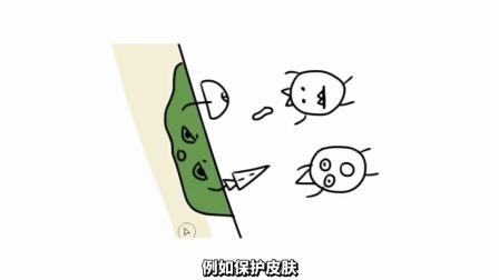 13个中国人没必要的生活习惯