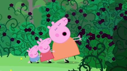 小猪佩奇:猪爸爸厉害了,还想凭借花来认路,不怕迷路吗