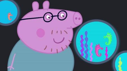 小猪佩奇:佩奇一家去海洋馆,买了好几张票,要进去啦