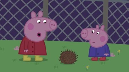 小猪佩奇:猪爷爷为了保护蔬菜,来果园抓蜗牛,有好多啊