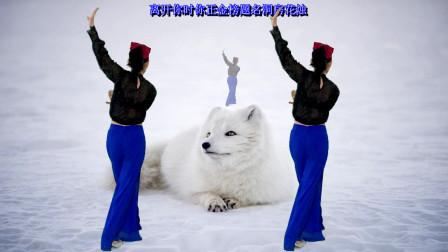 优美好看的网红舞《白狐》背面32步