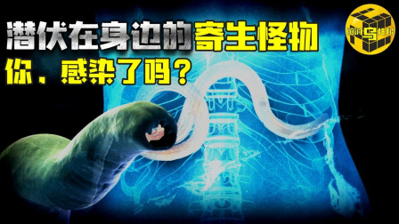 操控大脑的恐怖寄生怪物!传说30%的人类已经感染?!肆虐上千年,制造僵尸宿主,它们就潜伏在我们身边