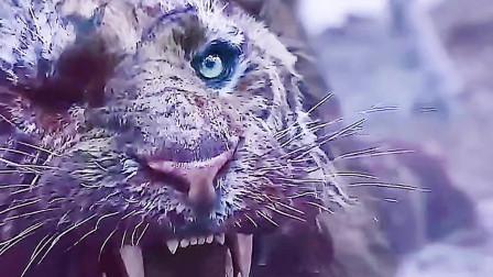 虎王妻儿被猎人夺走,愤怒的它却不能做些什么?倘若被任何人突破底线和原则,纵然万劫不复也要殊死一搏