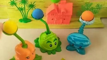 亲子幼教宝宝:苞心菜的炮弹在哪里