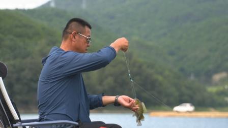 《游钓中国6》第26集 初探泉州山外水库 罗非窝中连竿草鱼