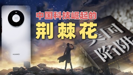 华为Mate 40 Pro 中国科技崛起之路的荆棘花