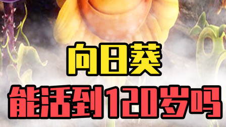 植物大战僵尸:60岁的向日葵遇到僵尸大军,它能活吗?