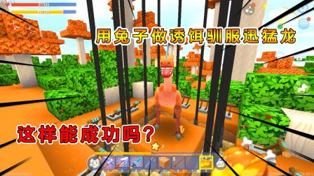 迷你世界荒岛求生29:用兔子做诱饵驯服迅猛龙,这样能成功吗?